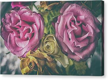 Metallic Sheets Canvas Print - Vintage Rose by Martin Newman