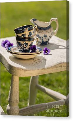 Vintage Teacups Canvas Print