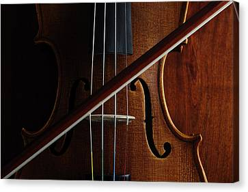 Violin Canvas Print by Nichola Evans