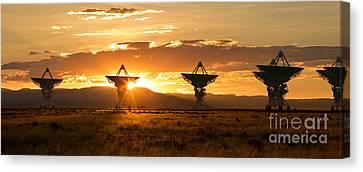 Vla At Sunset Canvas Print by Matt Tilghman
