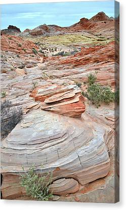 Canvas Print featuring the photograph Wash 3 In Valley Of Fire by Ray Mathis