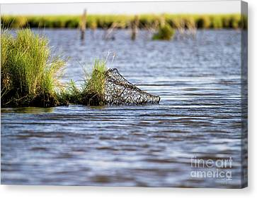 Washed Ashore Canvas Print by Scott Pellegrin