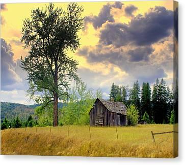 Washington Homestead Canvas Print by Marty Koch