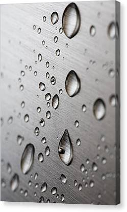 Rainy Day Canvas Print - Water Drops by Frank Tschakert