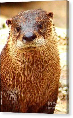 Giselaschneider Canvas Print - Watered Otter ... Montana Art Photo by GiselaSchneider MontanaArtist