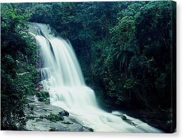 Waterfall Canvas Print by Amarildo Correa
