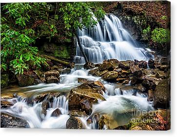 Waterfall And Rhododendron Canvas Print