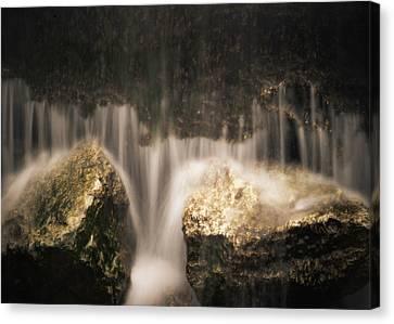 Waterfall Detail Canvas Print by Scott Meyer