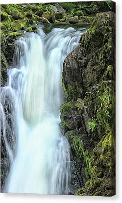 Garden Scene Canvas Print - Waterfall by Martin Newman