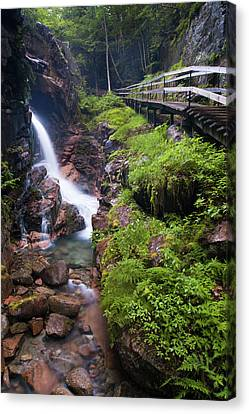 Waterfall  Canvas Print by Sebastian Musial