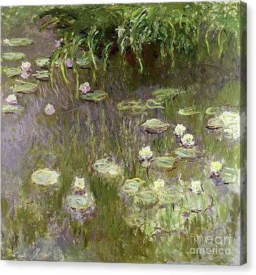 Lilies Canvas Print - Waterlilies At Midday by Claude Monet