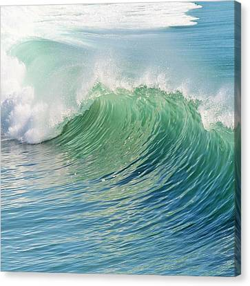 Waves Canvas Print by Marianna Mills