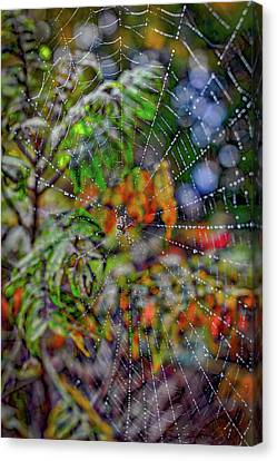 Silk Water Canvas Print - Webby by Angela Aird