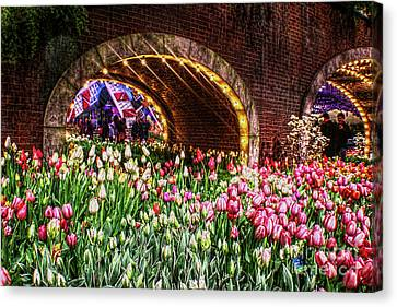 Welcoming Tulips Canvas Print by Sandy Moulder