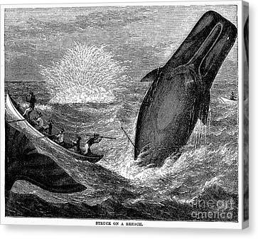 Whaling, 19th Century Canvas Print by Granger