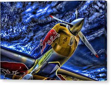 When Bulls Fly Canvas Print
