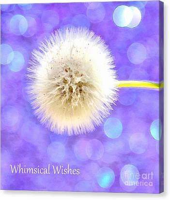Whimsical Wishes Canvas Print by Krissy Katsimbras