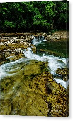 Whitaker Falls In Summer Canvas Print