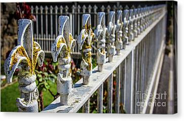Canvas Print featuring the photograph White Iron by Perry Webster