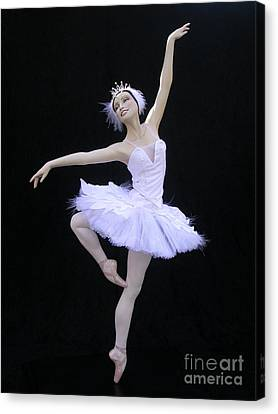 White Swan Canvas Print by Vickie Arentz