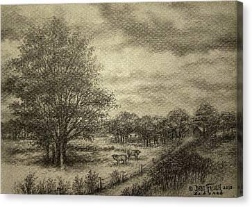 Wickliffe Landscape  Canvas Print by Debi Frueh