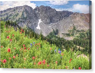Wildflowers In Albion Basin Utah Canvas Print by Utah Images