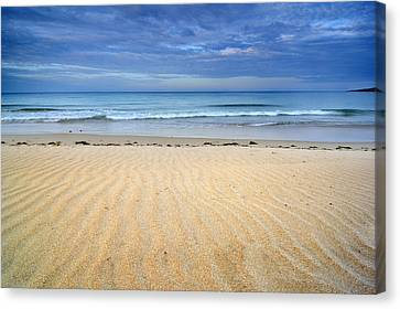 Wind Traces Canvas Print
