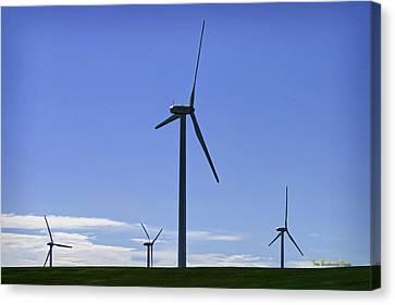 Windy Power Canvas Print by Tom Buchanan