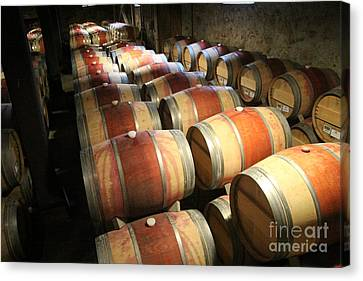 Wine Barrels Canvas Print by Anthony Jones