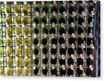 Wine Rack With Bottles Pa 03 Canvas Print by Thomas Woolworth