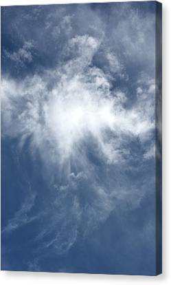 Wing And A Prayer Canvas Print