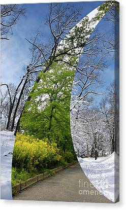 Winter And Summer Canvas Print by Oleksiy Maksymenko