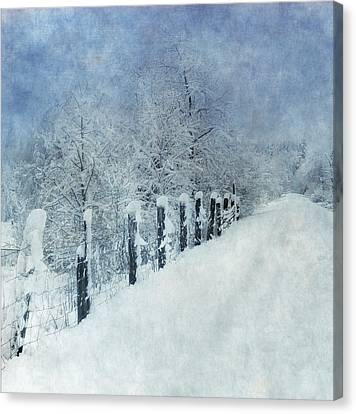 Canvas Print featuring the photograph Winter by Angie Vogel