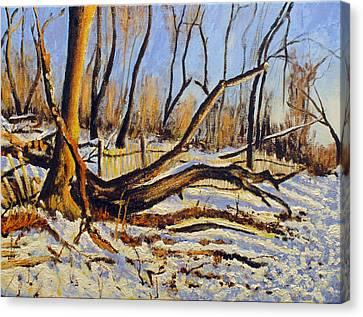 Winter Fence Canvas Print by Vladimir Kezerashvili