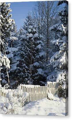 Winter Canvas Print by Igor Sinitsyn