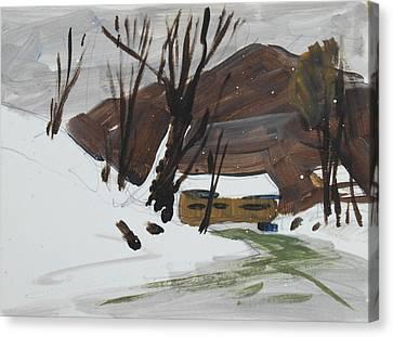 Winter Canvas Print by Len Stomski
