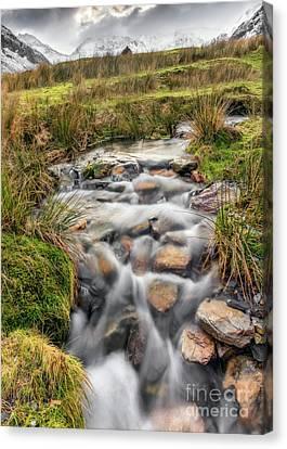 Winter Stream Canvas Print by Adrian Evans