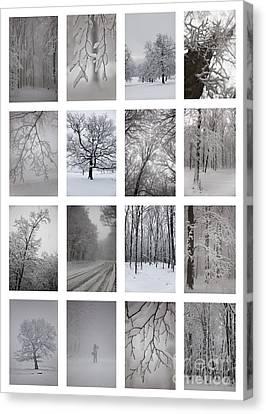 Winter Time Canvas Print by Gabriela Insuratelu