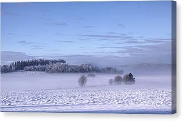 Winter Canvas Print by Veikko Suikkanen