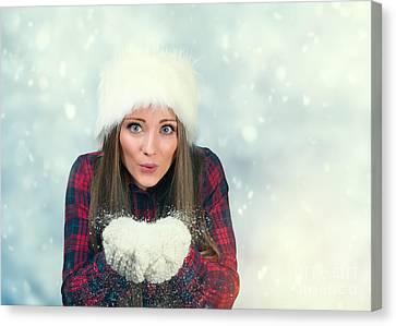 Winter Wonderland Canvas Print by Amanda Elwell