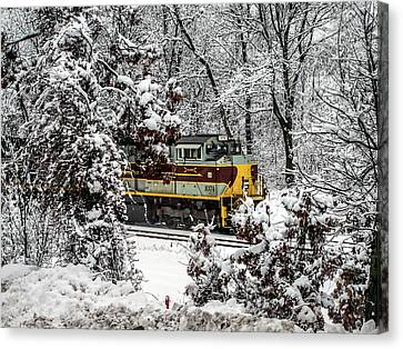 Winter Wonderland Canvas Print by Randy Dyer