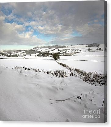 Foggy Day Canvas Print - Wintery Tales by Angel  Tarantella