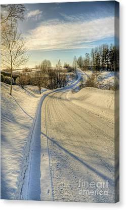 Wintry Road Canvas Print by Veikko Suikkanen