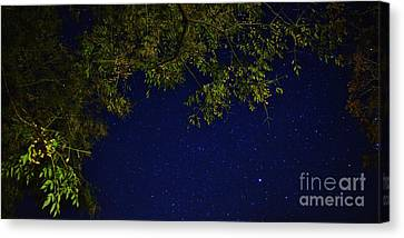 Looking To The Heavens Canvas Print - Wishing On A Star by Angela J Wright