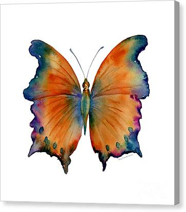 Fruit Canvas Print - 1 Wizard Butterfly by Amy Kirkpatrick