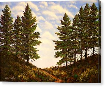 Wooded Path Canvas Print by Frank Wilson