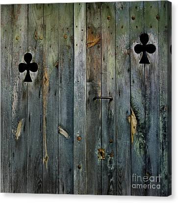 Wooden Door Canvas Print