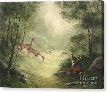 Woodland Surprise Canvas Print by Cathy Cleveland
