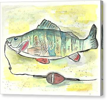 Yellow Perch Canvas Print