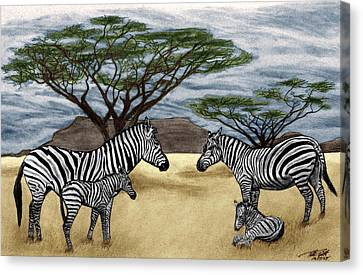 Zebra African Outback  Canvas Print by Peter Piatt